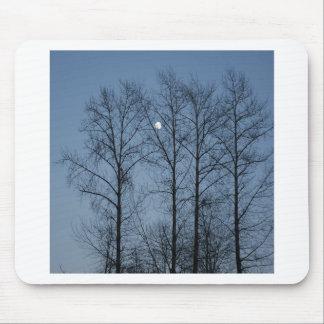 Tree Moonlit Blues Mouse Pad