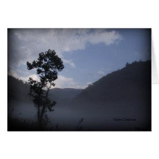 Tree near Fontana Dam, North Carolina Card