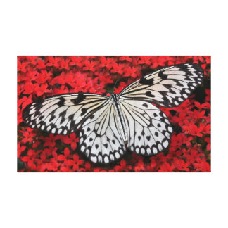 """Tree Nymph Butterfly On Red Flowers 20"""" x 12"""" Canvas Print"""