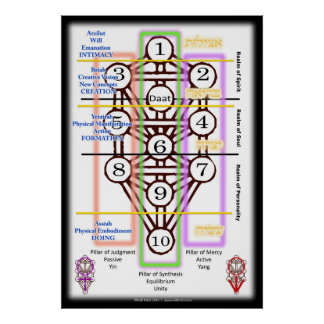 Tree of Life Diagram | All Sizes Poster