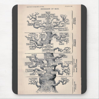 Tree Of Life / Pedigree Of Man Mouse Pad