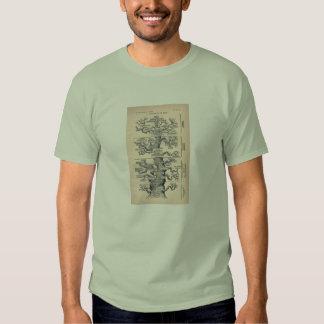 Tree Of Life / Pedigree Of Man Shirts
