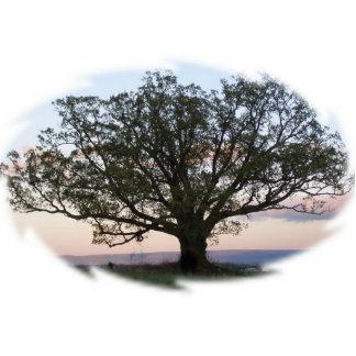 Tree of Life Sculpture Standing Photo Sculpture