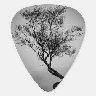 Tree on a Cliff Guitar Pick
