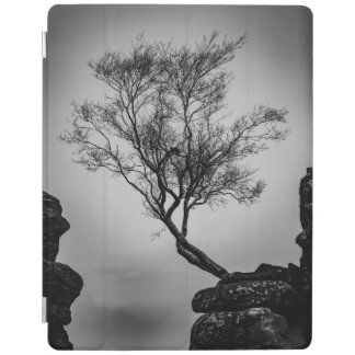 Tree on a Cliff iPad Cover
