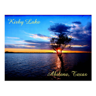 Tree On Kirby Lake Postcard