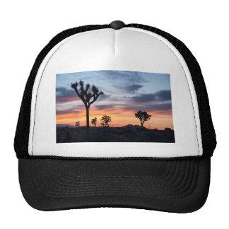 Tree Park  Party Personalize Destiny Destiny'S Trucker Hat