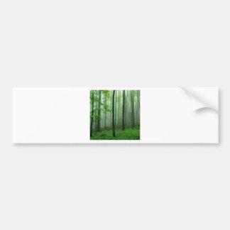 Tree Pencil Wood Bumper Sticker