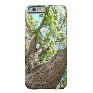 Tree Phone Case