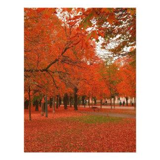 Tree Red Autumn Leaves Custom Letterhead