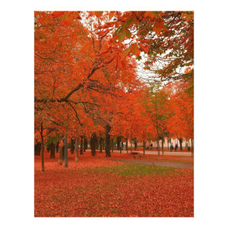 Tree Red Autumn Leaves Letterhead
