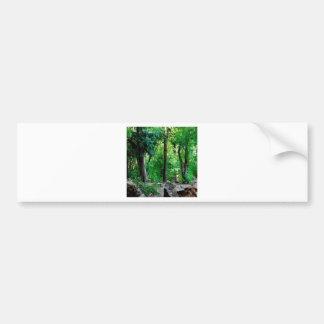 Tree Rocky Woods Bumper Stickers