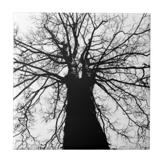 Tree Silhouette in Black and White Tile