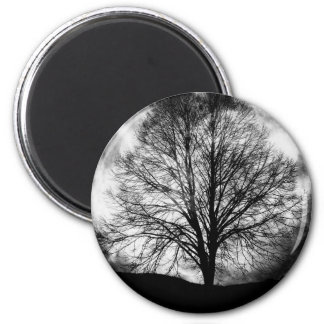Tree Silhouette in Front of a Full Moon Magnet