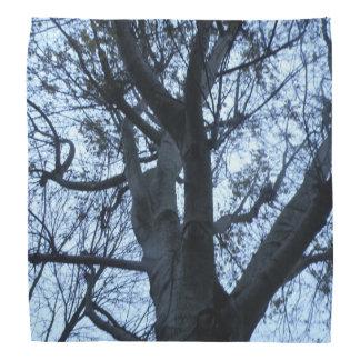 Tree Silhouette Photograph Bandana