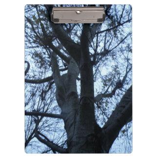 Tree Silhouette Photograph Clipboard