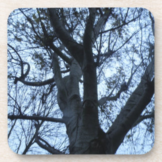 Tree Silhouette Photograph Cork Coasters