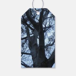 Tree Silhouette Photograph Custom Gift tags
