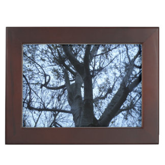 Tree Silhouette Photograph Custom Keepsake Box