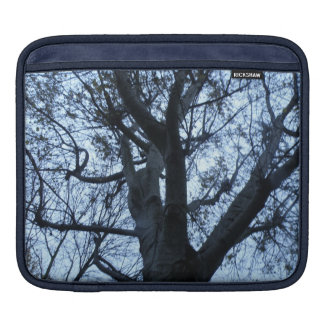 Tree Silhouette Photograph IPad Sleeve