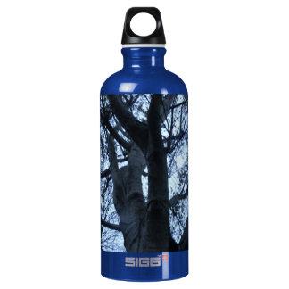 Tree Silhouette Photograph Macro Water Bottle