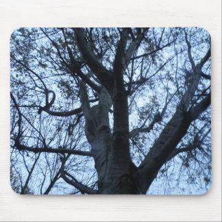 Tree Silhouette Photograph Mousepad