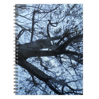 Tree Silhouette Photograph Notebook
