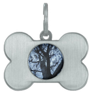 Tree Silhouette Photograph Pet Tag