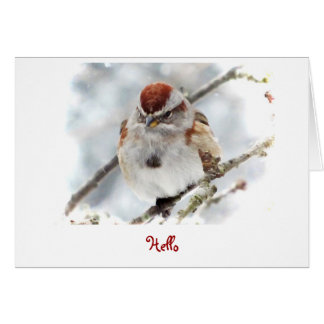 Tree Sparrow Thinking of You Card