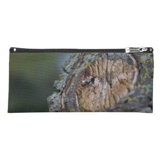 Tree Stump Photography Pencil Case
