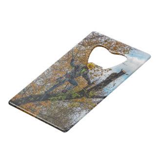Tree Surgeon Credit Card Bottle Opener