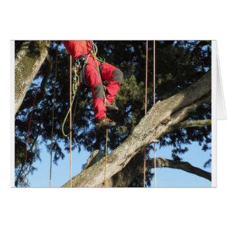Tree surgeon lumberjack hanging from a big tree card