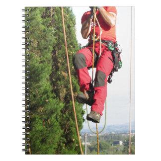 Tree surgeon lumberjack hanging from a big tree note books