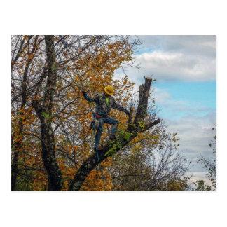 Tree Surgeon Postcard