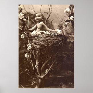 Tree Top Nest Poster