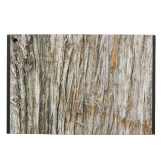 Tree trunk iPad air case