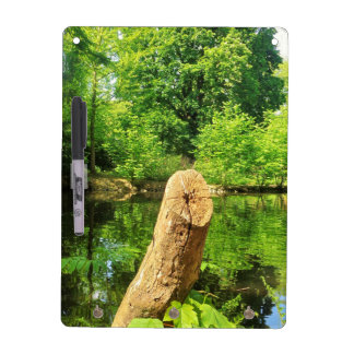 Tree Trunk Nature Photography Lake Park Dry Erase Board