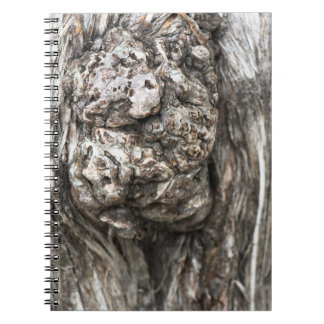 Tree trunk's knot notebook