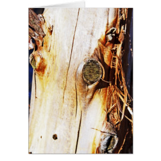 Tree Trunk with Knots Card