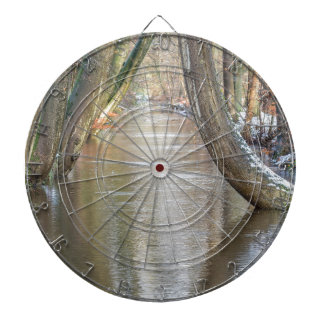 Tree trunks and forest stream  with snow in winter dart boards