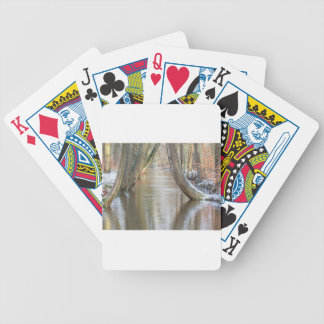 Tree trunks and forest stream  with snow in winter poker deck