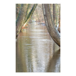 Tree trunks and forest stream  with snow in winter stationery