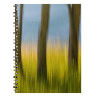 Tree Trunks and Grass   San Juan Islands, WA Notebook
