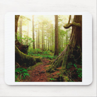 Tree Walk Of The Roots Mouse Pad