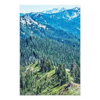 Trees and  Ridges Art Photo