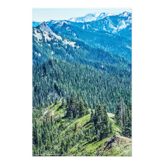 Trees and  Ridges Photo Print