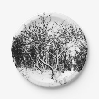 Trees and Snow Scene, Black and White Paper Plate