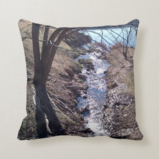 Trees and Stream of the Midwest Throw Pillow