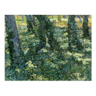 Trees and Undergrowth by Vincent van Gogh Postcard