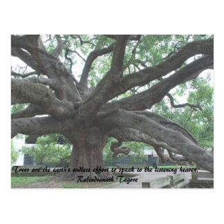 Trees Are Earth's Endless Effort..     R. Tagore Postcard